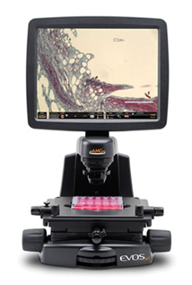 AMG EVOS ci Digital Inverted Brightfield and Phase Contrast Microscope